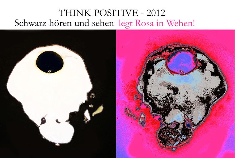 Wir wünschen ein frohes, gesundes und gelingendes Neues Jahr 2012 ...